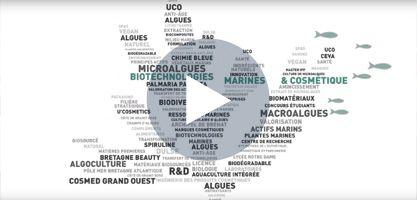 la filière cosmétique biotech à Guingamp