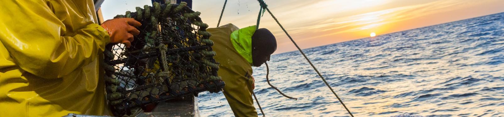 La pêche, une activité traditionelle en Côtes d'Armor